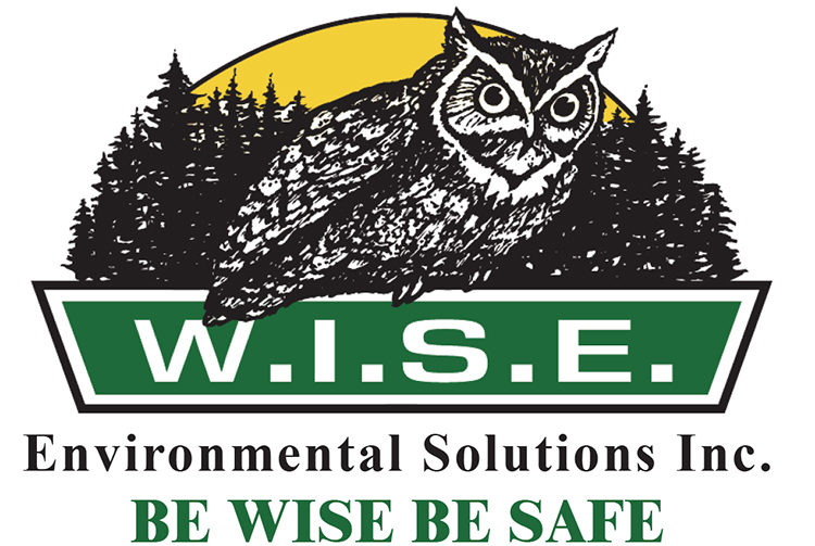 Wise Environment